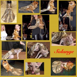 """Soraya"" Gown For A Pet By Joanna Aqua"
