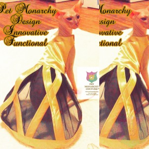 """""""D'Or"""" Gown For A Pet By Joanna Aqua"""