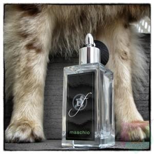 Maschio Fragrance For A Male Dog