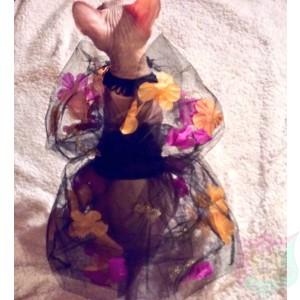 Halloween Tutu by Joanna Aqua