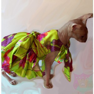 Gucci Silk Sash Gown for a Pet by Joanna Aqua