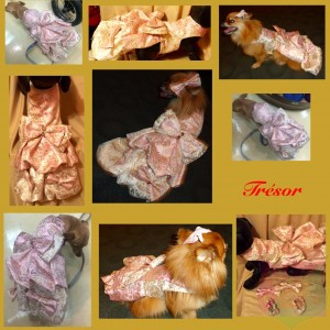 """""""Tresor"""" Gown For A Pet By Joanna Aqua"""